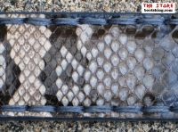 Sendra Gürtel aus blauem Python Leder
